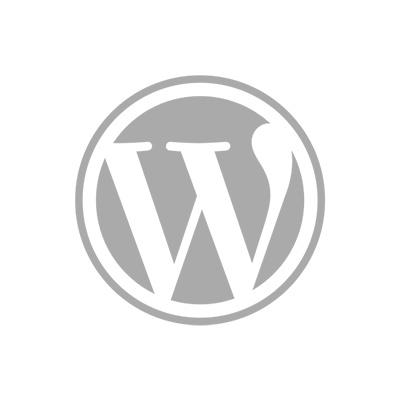 Wordpress software onderhoud voor uw website